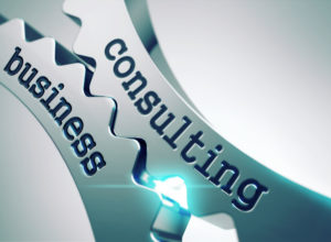 Delhi Business Consultants For You Business Planning